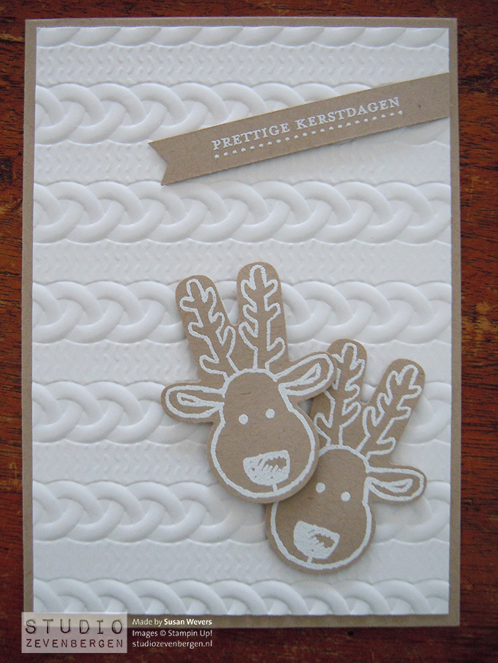 Cookie Cutter Christmas met Cable Knit Dynamic Textured Impressions™ Embossing Folder